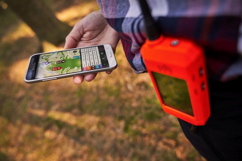 Dogtrace Dog GPS X30 nyomkövető nyakörv vadászkutyáknak-2