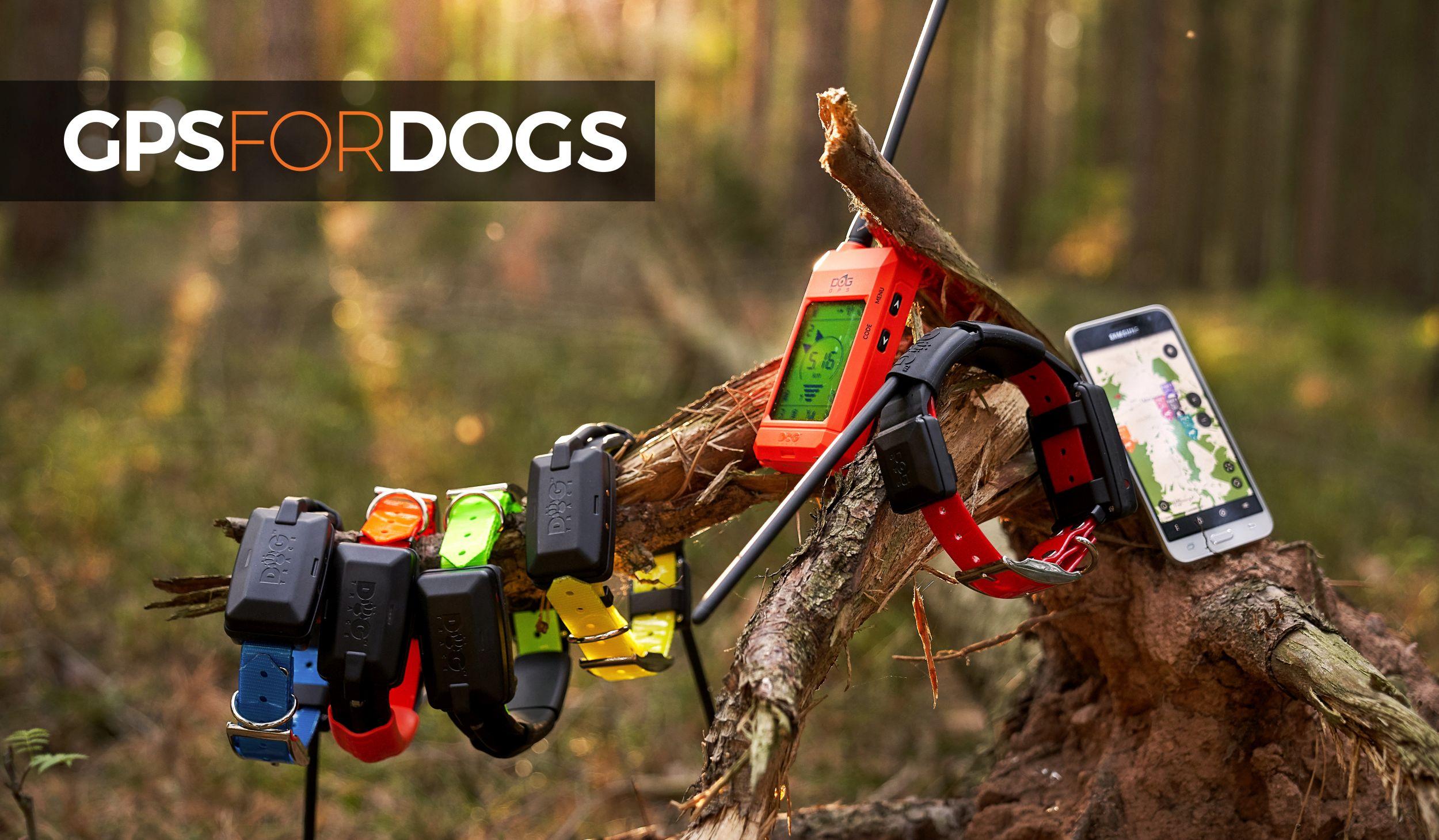 Dogtrace Dog GPS X30 nyomkövető nyakörv vadászkutyáknak