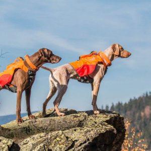 Dogtrace GPS mellény kutyáknak (6)
